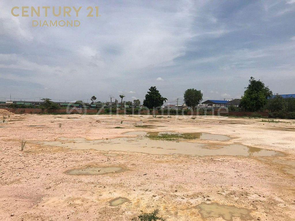 Land For Sale/ដីលក់បន្ទាន់⚡️ នៅជាប់ផ្លូវទួលពង្រ ចំការដូង (ID:#D0229)